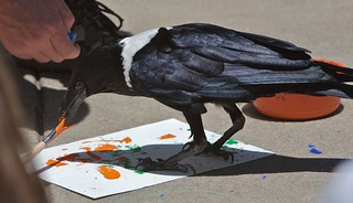 crow painting | by jetrotz