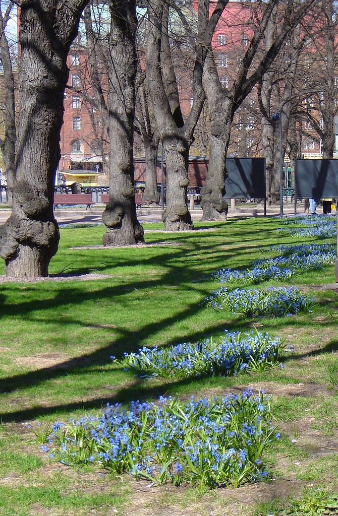 Johanneksen kirkon puisto