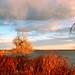 Donath Lake Sunset
