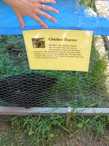 Soil born farm chicken tractor annie john flickr for Soil born farms
