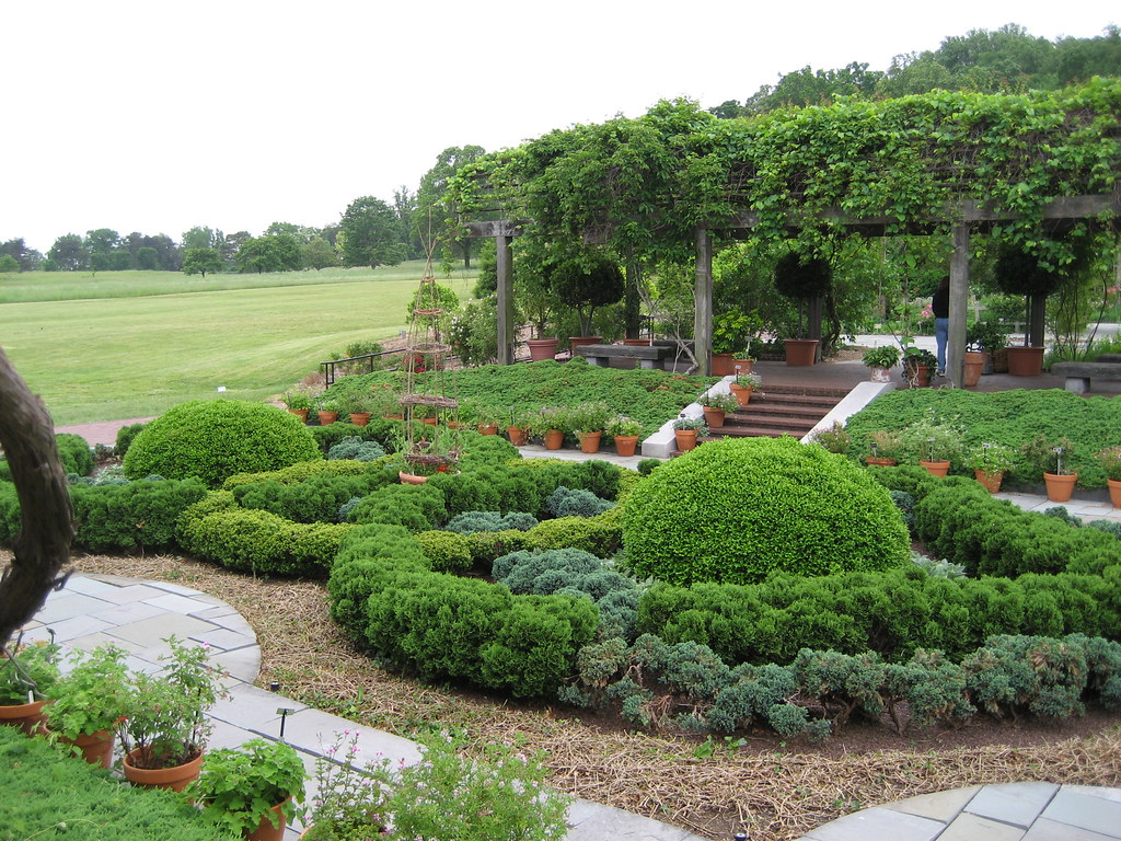 Nat herb knot garden 1 ck60 flickr for Knot garden designs herbs