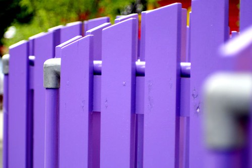 Purple picket fence makes you feel like there is a tilt for Purple makes you feel