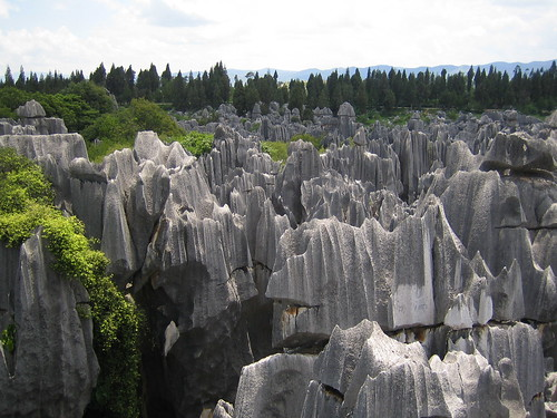 Stone Forest Horizon | by maveric2003