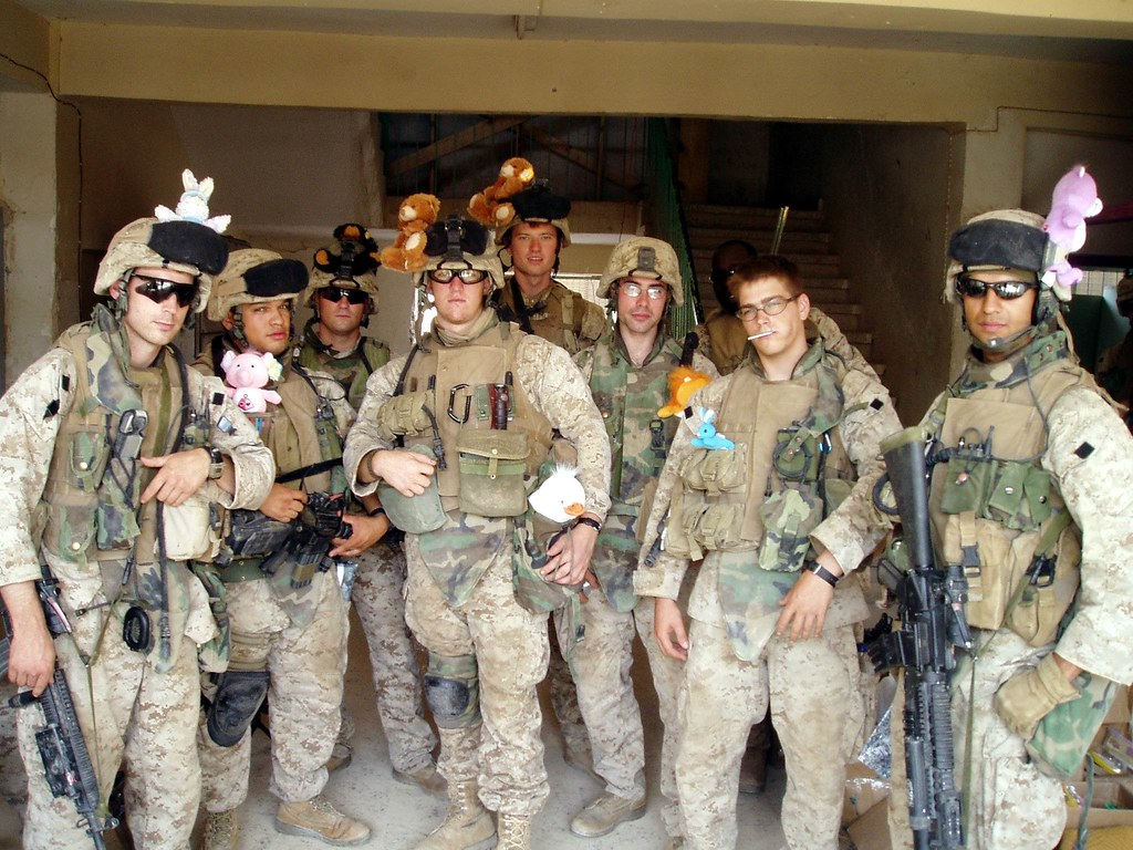 Usmc Teddy Bear The Teddy Bear Squad by
