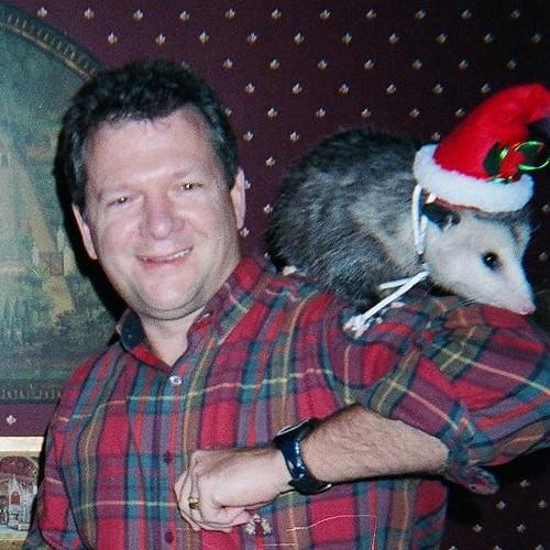 Christmas Possum | Richard Wilbourn | Flickr