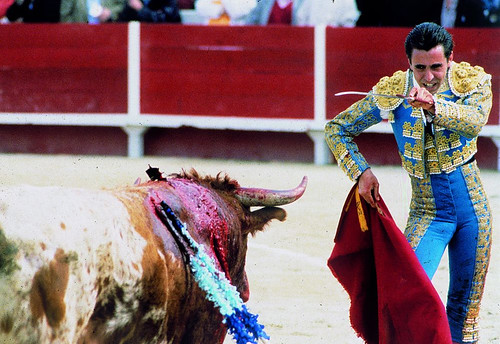 Bullfighting (2) | by icabs