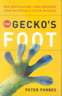 The Gecko's Foot: Bio-Inspiration--Engineering New Materials From Nature | by Wanamaker Librarians & Library Techs