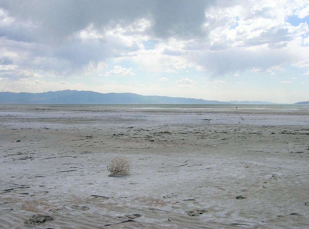 Tumbleweed Mere Miles Away We Came Upon The Great Salt