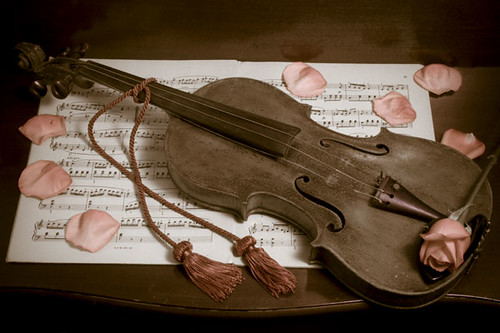 antique violin with rose petals i ve decided to try a