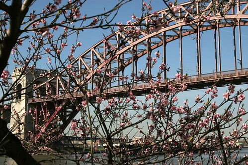 Spring Comes to Hell Gate | by Pabo76