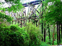 REM Trestle 1 | by Crysi