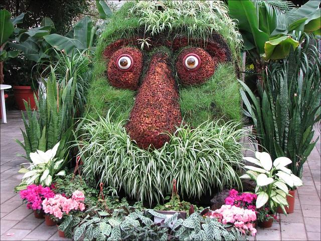 plant head plant head troll at garden of eden tourist