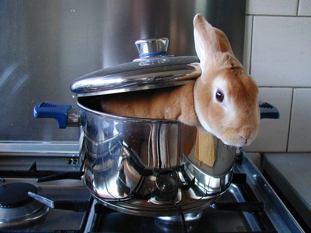 How to deal with a bunny boiler