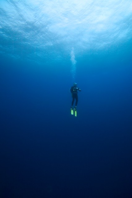 Tofo Mozambique  city pictures gallery : Scuba Diver Tofo, Mozambique | Flickr Photo Sharing!