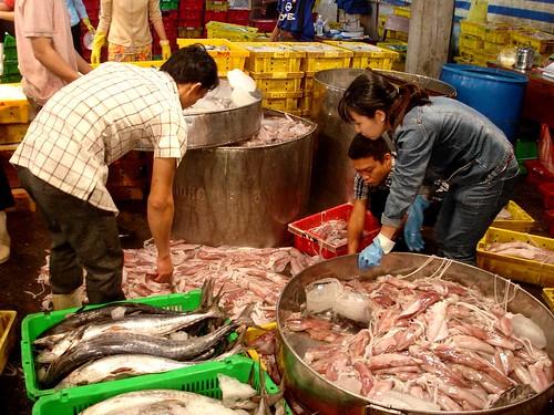Night fish market72 night fish market across the river for River fish market