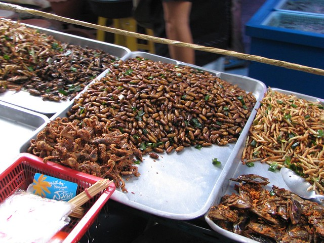 Cockroach Food at the Weekend Market | mykaul | Flickr