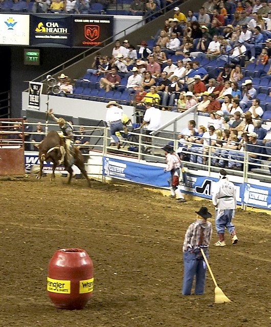 Karate Bull Riding What Everyone Comes To See I M Not