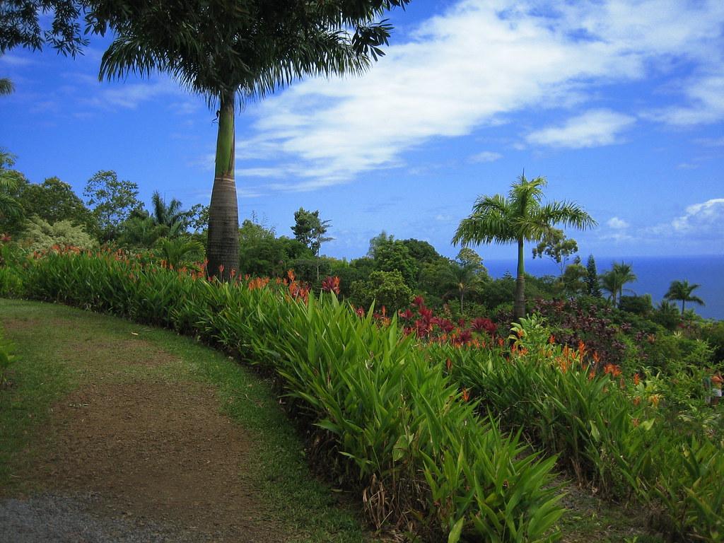Garden Of Eden Looking Out Over The Garden Of Eden Maui
