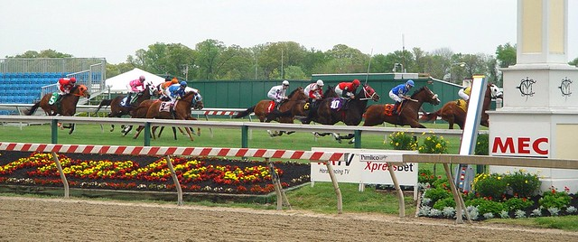 Live Racing at Pimlico