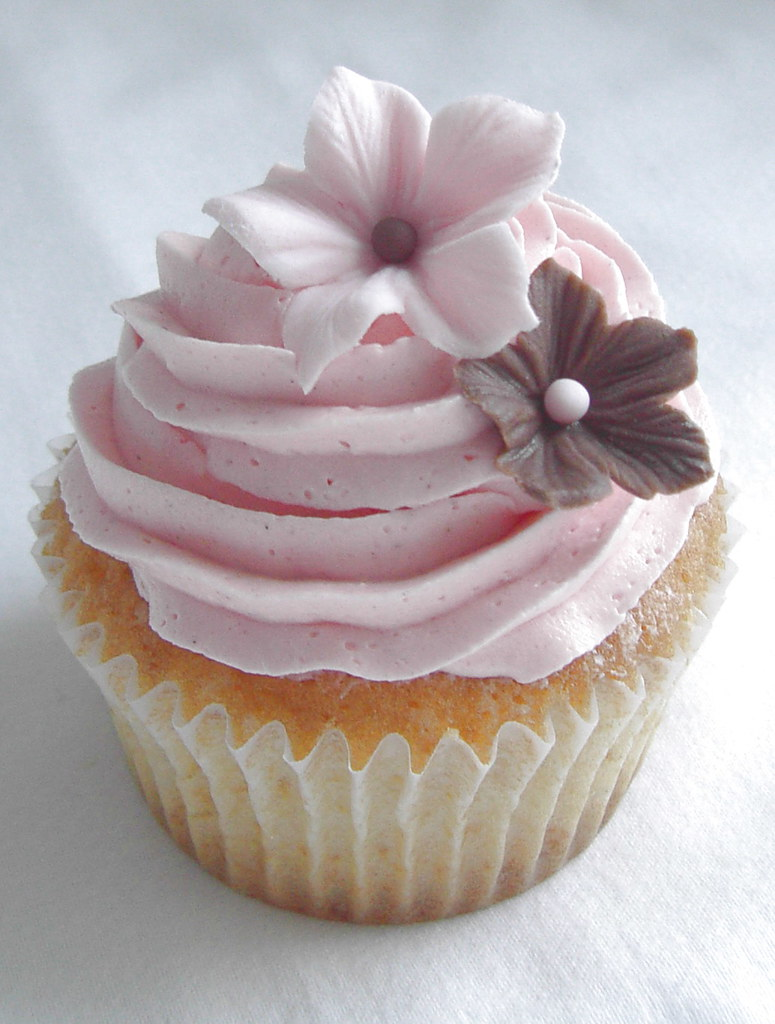 Pretty Pink Cupcake Close Up Vanilla Cupcake With Bc