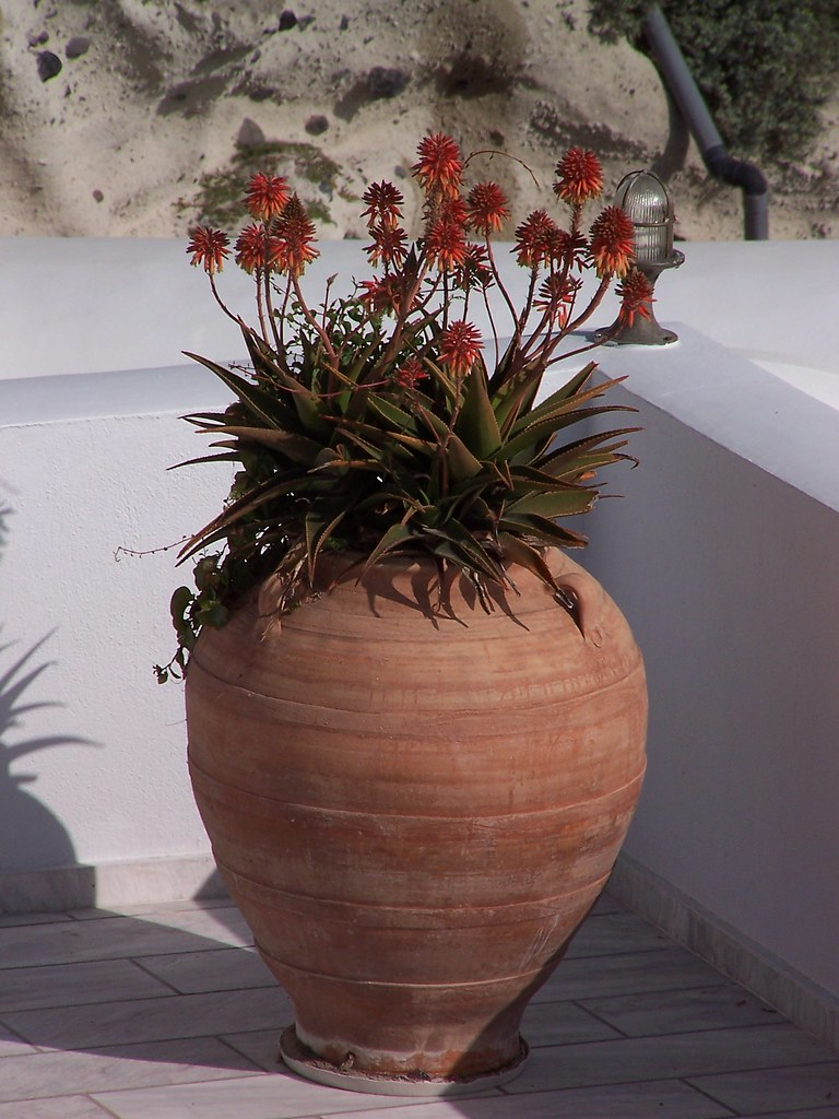 clay plant pot, Santorini