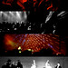 Nouvelle Vague, New Wave Tour Live in Hong Kong