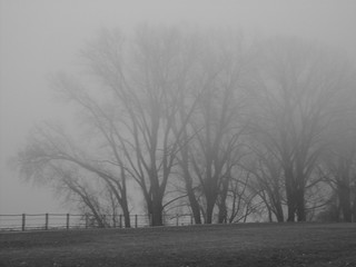 Evening Fog, Black & White Version | by dreamcicle19772006, ON & OFF