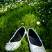 My Shoes (in a field of daisies)