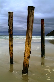 St Clair Beach Poles in Low Light Dunedin | by _setev