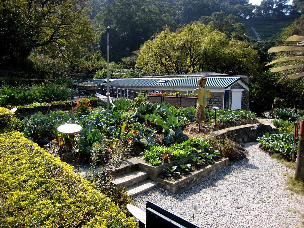Organic Farm Garden Of Eve On Long Island