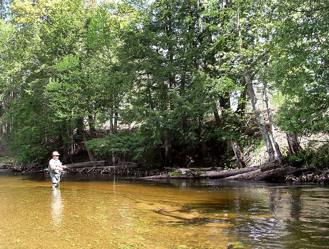 Fly fishing the maple river mi peter french flickr for Fly fishing michigan