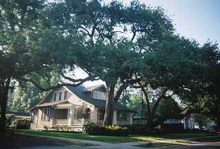 Ancient Live Oaks, Charming Cottage, Old Metairie, Jefferson Parish, Louisiana | by hoeysbasindrainagealliance