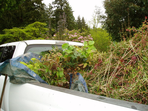 Plant filled Pick-up | by RHR Horticulture