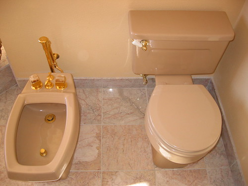 Western Toilet And European Bodet The Unusual Thing