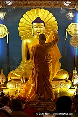 the history and importance of buddha the enlightened one This is perhaps the most important of all the buddhist symbols the wheel represents the buddha's enlightenment and his role as the wheel-turner, or the one who started a new cycle of teachings and consequentially changed the entire course of destiny.