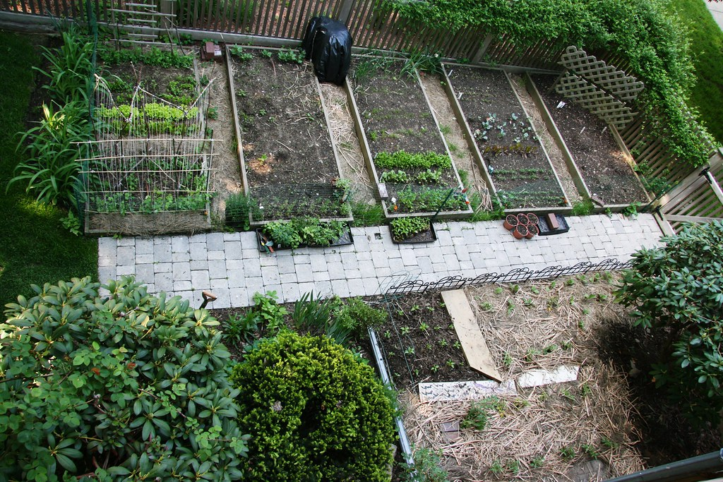 Image Result For Aerial View Vegetable Garden