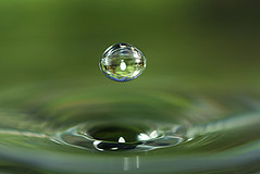 Water drop | by Tanya Puntti (SLR Photography Guide)