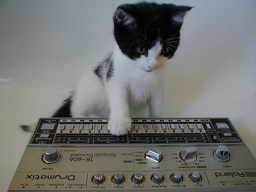 What genre s do you make page 3 gearslutz pro audio for What do you know about acid house music