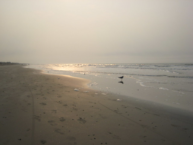 Kiawah Island Vacation Homes For Rent