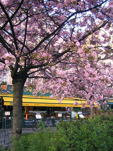 I love Paris in the spring time... | by In Praise of Sardines