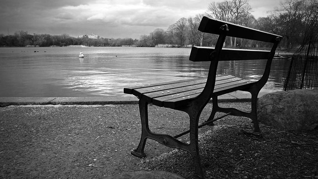 Lonely Bench By The Lake 103 365 Alternate View On Black Flickr