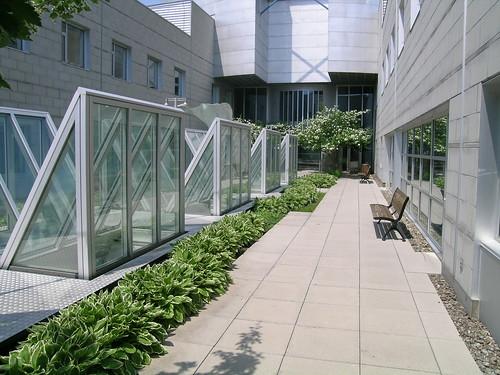 Hec montr al jardin int rieur l 39 un des jardins int rieur flickr - Jardin interieur montreal colombes ...