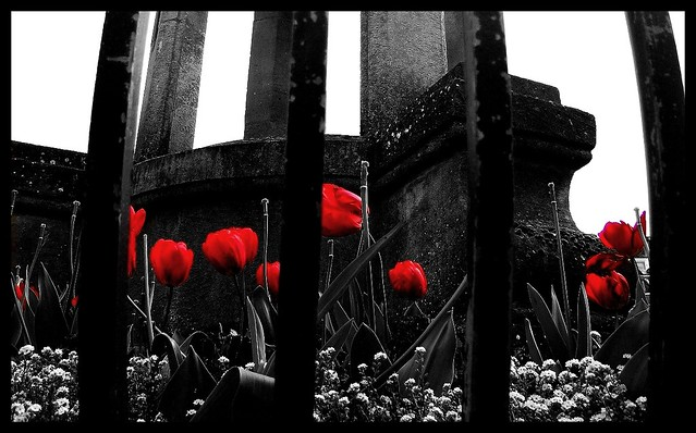 Black White And Red All Over A Random Shot Taken In Bath Flickr