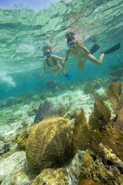 IoB-Snorkeling, South Water Caye, Belize