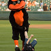 Oriole Bird takes care of an unruly kid