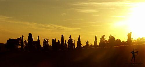 tuscany cypresses in the sun toskanische zypressen in. Black Bedroom Furniture Sets. Home Design Ideas