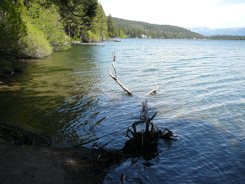 Fishing rod and donner lake donner lake chicadecasa for Donner lake fishing report