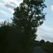Kilkenny Farm Lane