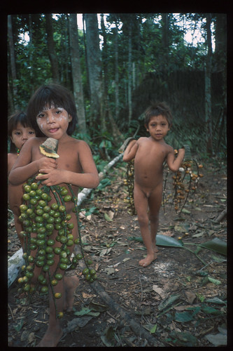 YANOMAMI Children with palm fruits
