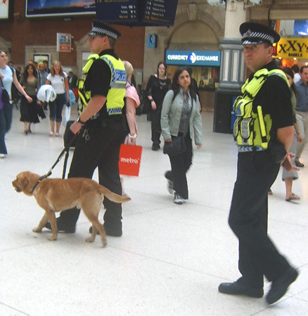 Police Free Dogs
